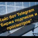 Кейс бот Telegram — Биржа подписок и просмотров. (Бот для заработка в Телеграм)